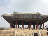 広大な水原華城