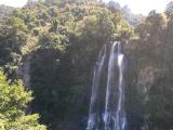 美しい白滝