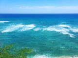 眺めているだけでも癒されるビーチでした。