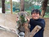ホンモノのコアラにタッチ!