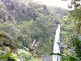 アカカの滝。落差があります‼