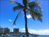 ニライカナイ in HAWAII