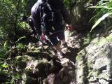 ジャングルを行く一行。動画撮影はGoProにおまかせ。