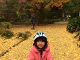 日比谷公園で銀杏の絨毯を満喫♡