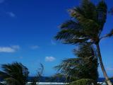 青い海、白い砂
