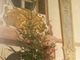 12月だったのでクリスマスツリーが飾られていました