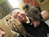 2 owls at the same time !