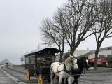 写真は馬車と小さくモンサンミッシェルが写ってます