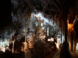 鍾乳洞の中の様子