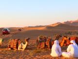 砂漠とランクルとラクダ