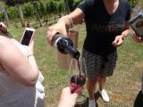 ブドウ畑でふるまわれるワイン♪