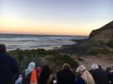 ペンギンPLUS席。ペンギン上陸まではこの日は写真OKでした