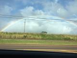 虹が見れました!