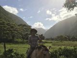 めずらしく晴れているワイピオ渓谷