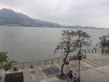 曇った淡水