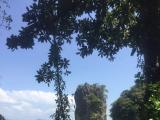 ジェームスボンド島