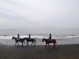 1時間の乗馬体験