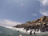 アシカの島です。天気も良好な日が多いようです。