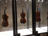 前後左右に弦楽器コレクションが展示されていました。楽器好きにはたまりません!