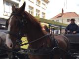 沢山の馬車が行き交います。石畳の雰囲気とよく合います★☆★