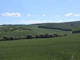 モラヴィアの大草原
