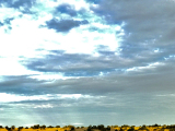 バルーンの影を見ると空に浮かんでいる事を実感出来ます
