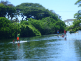Paddle boarding on the river near Haleiwa