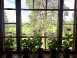 窓から見た美しい風景