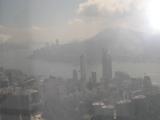 タワーからの景色です