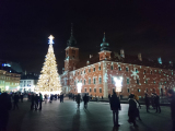 旧市街クリスマスツリー