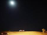 月の砂漠を遥々~