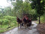 わいピオ渓谷麓に到着。しばらくすると馬車も到着。