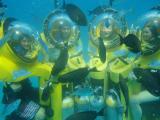 海の中の家族4人