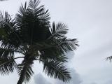 台風が発生した日の海です