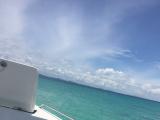 ボートからの海の写真