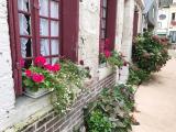 ブイユ村です。どこも可愛いお家ばかり。