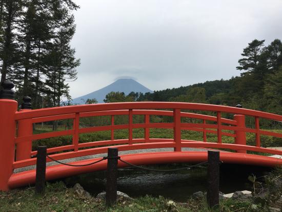 mt fuji lake kawaguchi and oshino ninja village bus tour