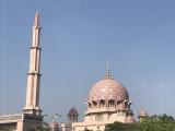 ピンクモスクです