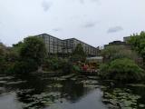 非常美丽的兰花博览会