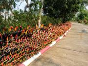 SNS映えする寺院に奉納されたものすごい数の闘鶏の置物