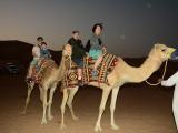 體驗騎駱駝