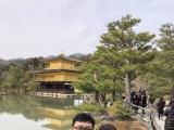 金碧輝煌的金閣寺