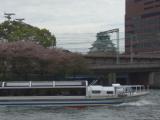 大阪城就在不遠處