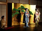 表演前,先說明練習生及正式舞妓的裝容、服飾差異